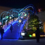 【2015】大阪でデートに使えるイルミネーションスポットまとめ